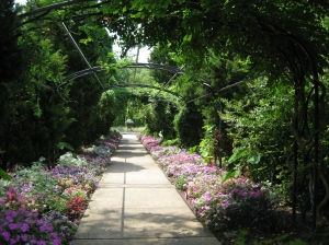 Image From Nashville Botanical Garden
