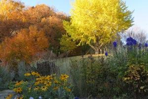 Minnesota Landscape Arboretum Fall 2014
